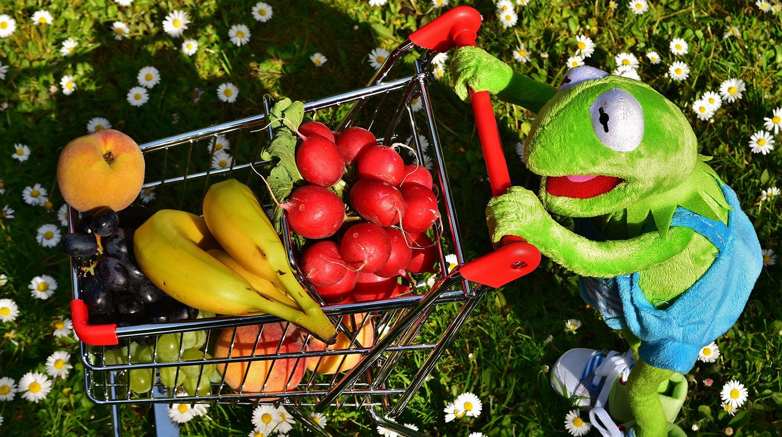 Obst und Gemüse essen können Kinder lernen